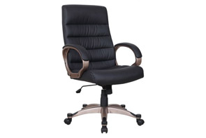 Canis Minor Work Chair